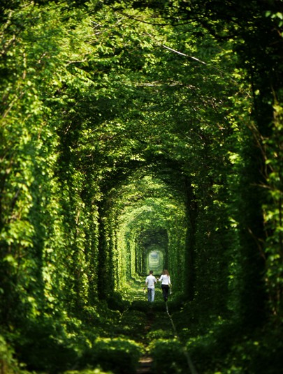 tunnel-rexfeatures_2697669k