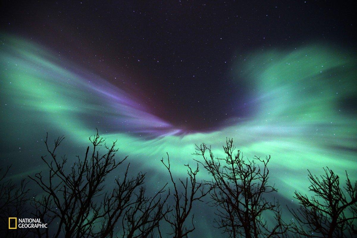a-striking-northern-lights-show-in-karjakla-harjumaa-estonia