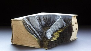 """""""L'erosione della cultura"""": vecchi libri diventano paesaggi 3D"""