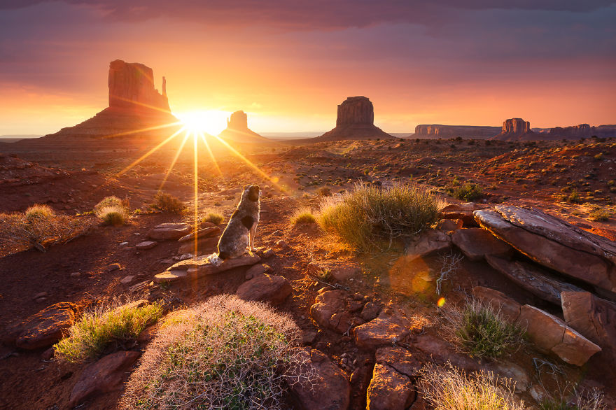 United_States_Monument_Valley_MG_4734_7-57066dd62f14c__880