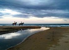 Horse Yoga: l'equilibrio psico-fisico con la natura e con i cavalli