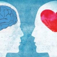 Intelligenza emotiva: le abilità del cuore per vivere una vita felice