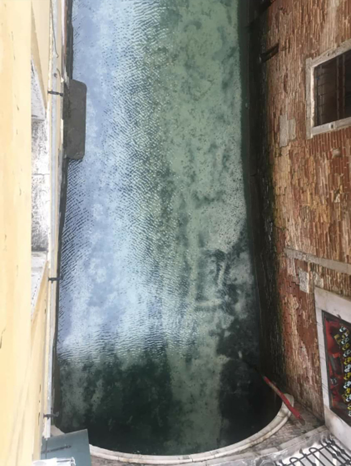 fish-seen-in-clear-venice-canals-after-coronavirus-lockdown-3-5e71e15057708__700
